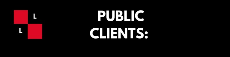 lachman law tech law firm public clients