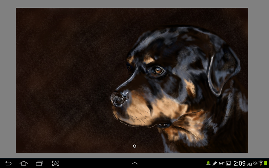 Galaxy note 10.1 using Sketchbook pro for tablets