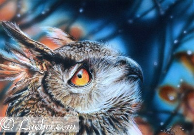 Eagle owl colored pencil over an airbrushed background