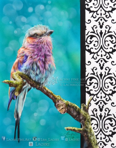 lilac breasted roller in colored pencil over an airbrushed background