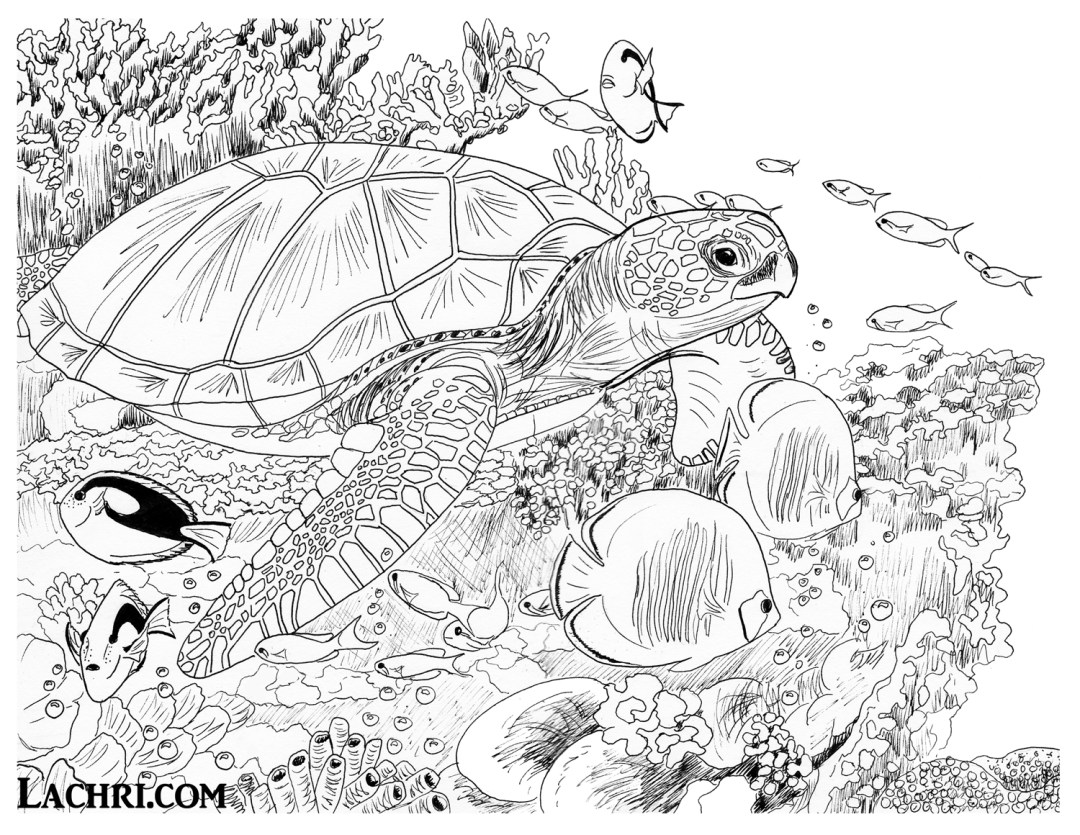 Color this sea turtle underwater scene yourself in my free adult coloring page!