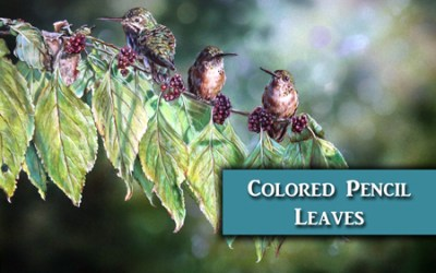 Hummingbirds – Colored Pencil & Airbrush Art Lesson