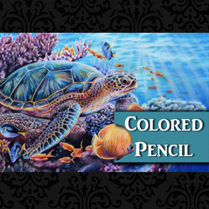 Sea Turtle Colored Pencil Tutorial Lachri Fine Art