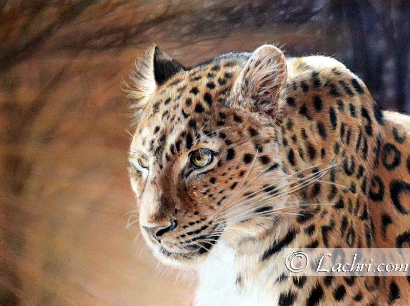 """leopard""   $550"