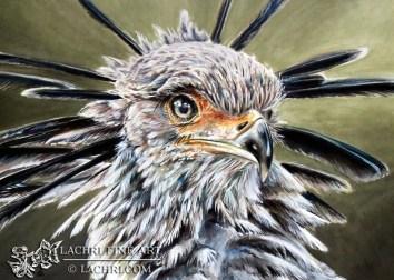 Secretary Bird painted in Derwent Inktense
