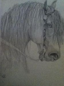 Horse by Dani Collins