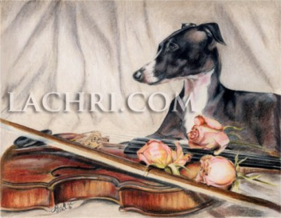 Italian Greyhound and violin colored pencil drawing