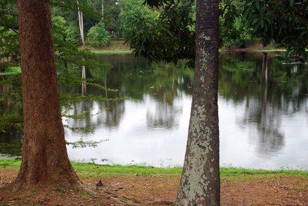 Lago de SilencioCris Aznar