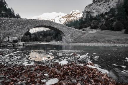 El puente y sus hojas