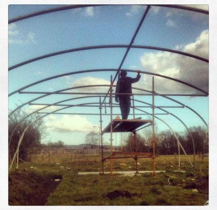 Finally some sun, and a new polytunnel