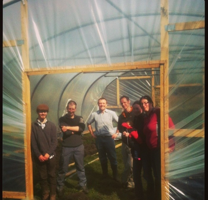 One million trees, one polytunnel, many volunteers