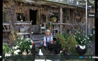 Living off grid – Calamity Jill