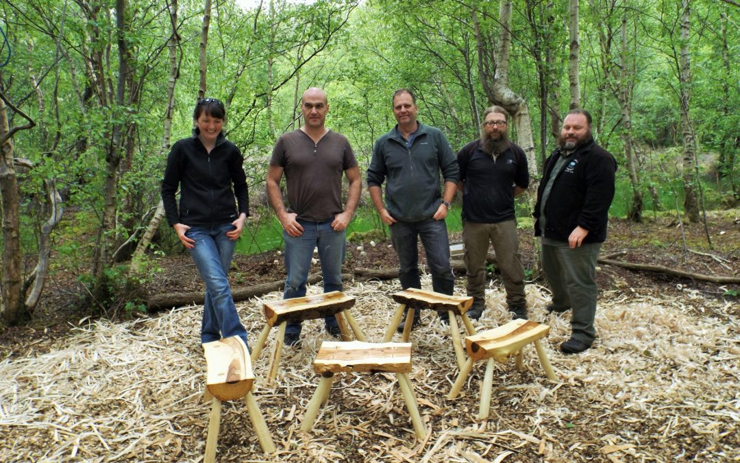 Make a stool from a log – 2 April & 30 Sept 2017