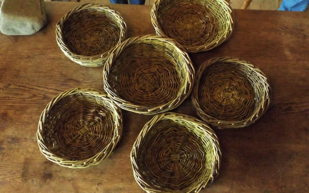 Willow basket making September 10