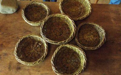 Willow basket making September 10