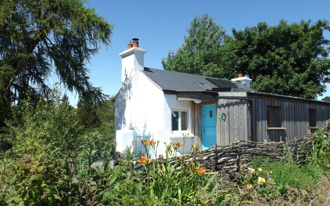 High summer at Birch Eco Cottage – off grid self catering