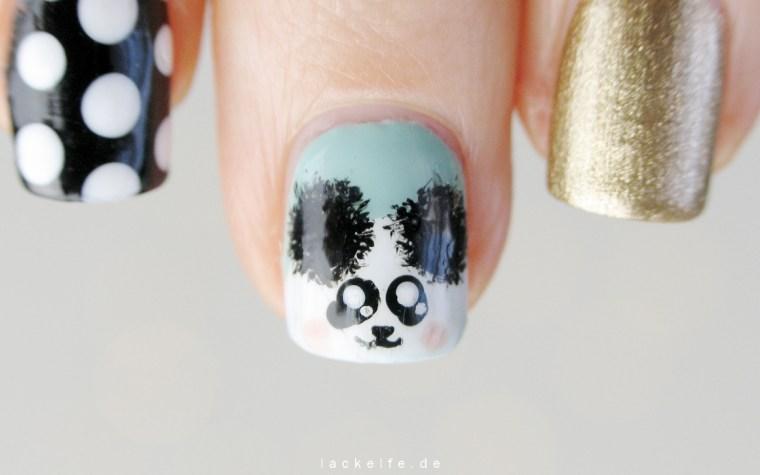 Panda_1_lackelfe