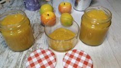mermelada de mango sin azucar