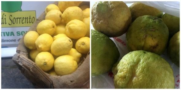 dos-limones