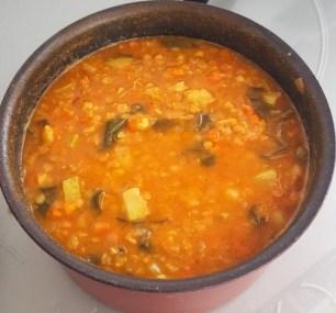 dhal-cocinaenrosa.wordpress.com (Small)