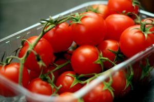 tomates-21