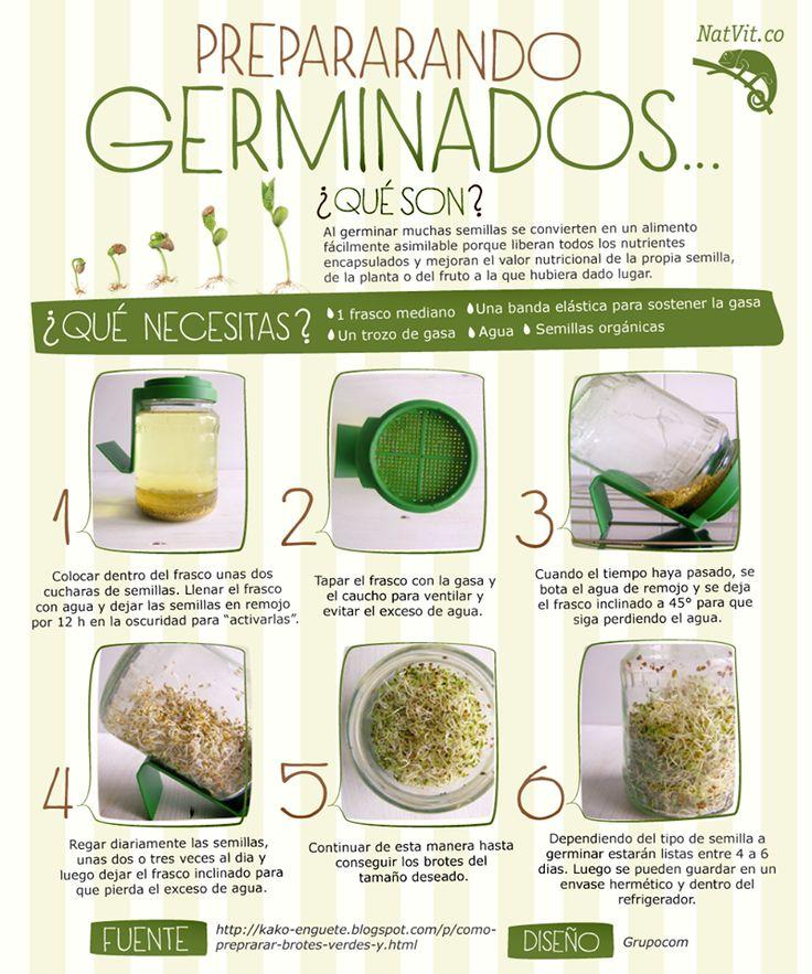 germinados-La Cocina Ortomolecular
