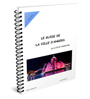 Couverture Guide de la Ville d'Angers by La COLOC ANGEVINE