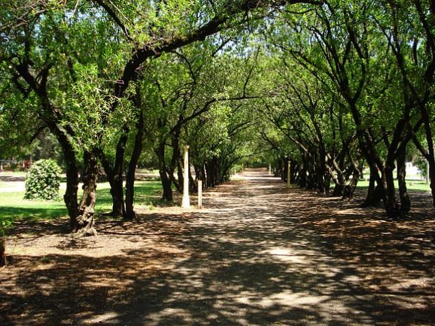 18-07-FOTO-Parque-Miguel-Lillo