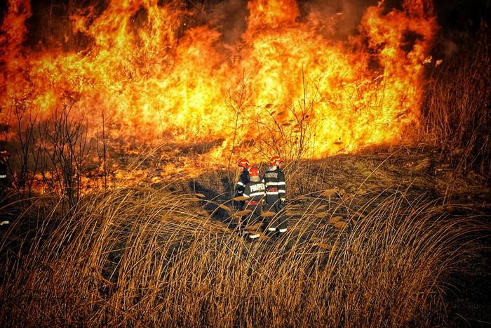 Incendiu in parcul natural vacaresti