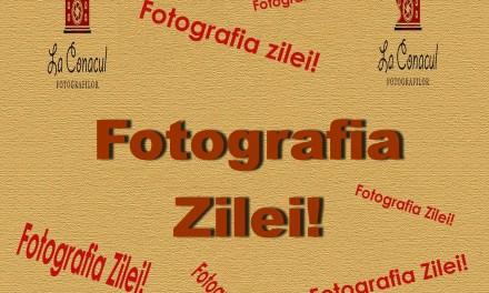 Fotografia Zilei!