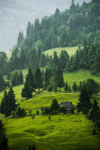 Vară la țară Catalin Arcu 2 resize