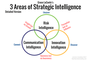 Strategic frameworks, risk intelligence, innovation, communication, influence