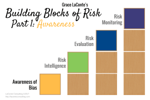 Strategic risk, risk management, awareness, bias