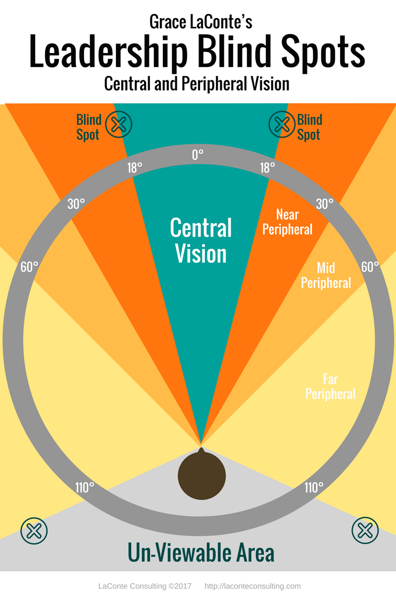 Leadership Blind Spots – Central and Peripheral Vision – LaConte Consulting