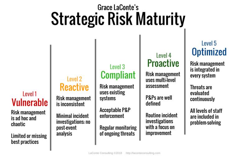 strategic risk, risk management, strategic plan, risk maturity