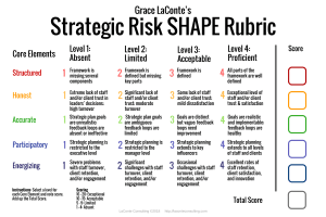 strategic risk, strategic planning, risk rubric, strategic SHAPE, strategy tool