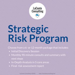 strategic risk, strategic risk program, risk management, risk assessment, risk evaluation, strategic consultation, strategic analysis