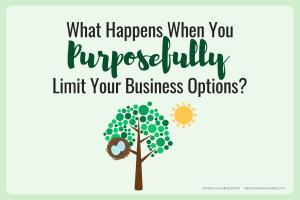 purpose, business purpose, purposeful, purposefully, business limits, limits, business options, limitation, business options, business strategy, strategic planning, strategic risk