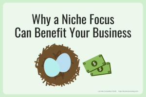 niche focus, business focus, niching, niche company, niche market, business success, business profit, profit margin, business strategy, strategic planning, strategic risk