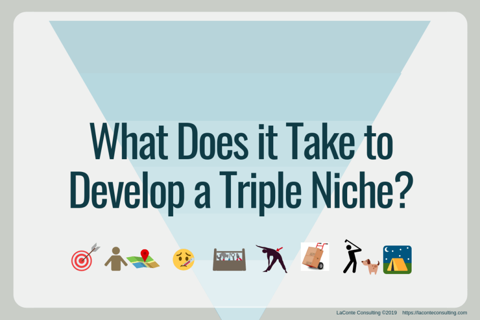 niche, triple niche, practice niche, niche practice, niche specialty, specialized healthcare, healthcare practitioner, marketing niche, strategic marketing, marketing strategy
