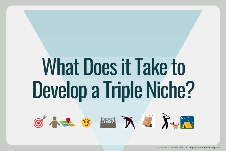 niche, triple niche, practice niche, niche practice, niche specialty, specialized healthcare, healthcare practitioner, marketing niche, strategic marketing, marketing strategy