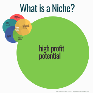 niche, what is a niche, niche practice, practice niche, niche practitioner, healthcare niche, niche business, niche marketing, marketing strategy
