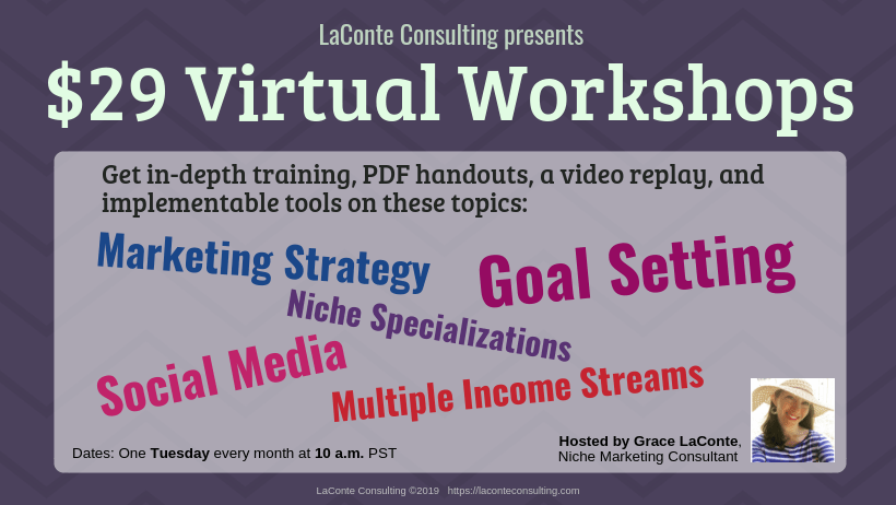 workshop, virtual workshop, workshop topics, live video, marketing strategy, niche, niche specialization, goal setting, social media, multiple income, LaConte Consulting