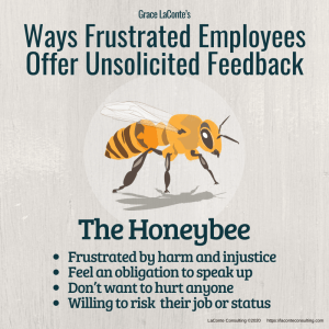 honeybee, frustrated employees, angry employee, injustice, workplace, toxicity, conflict, conflict resolution, strategic risk