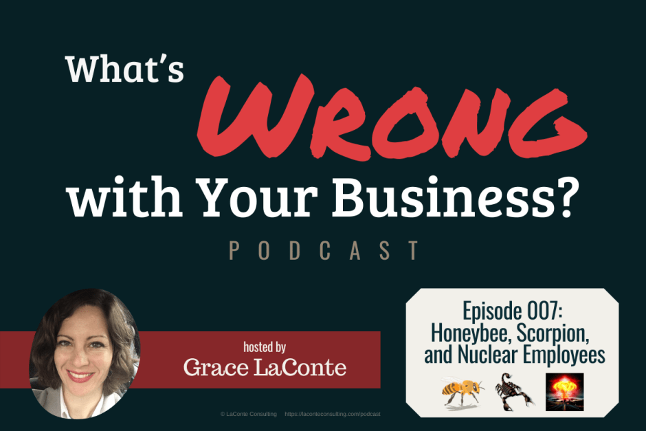 """What's Wrong with Your Business"" podcast with Grace LaConte Episode 7, Honeybee Scorpion and Nuclear Employees"