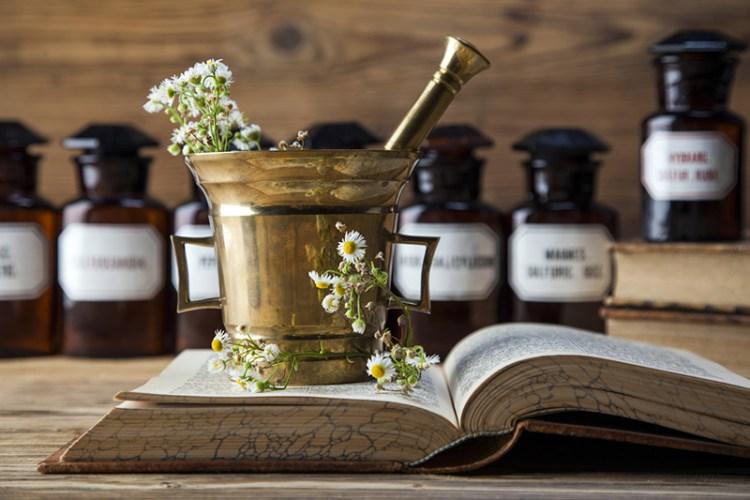 atelier des plantes diy huiles