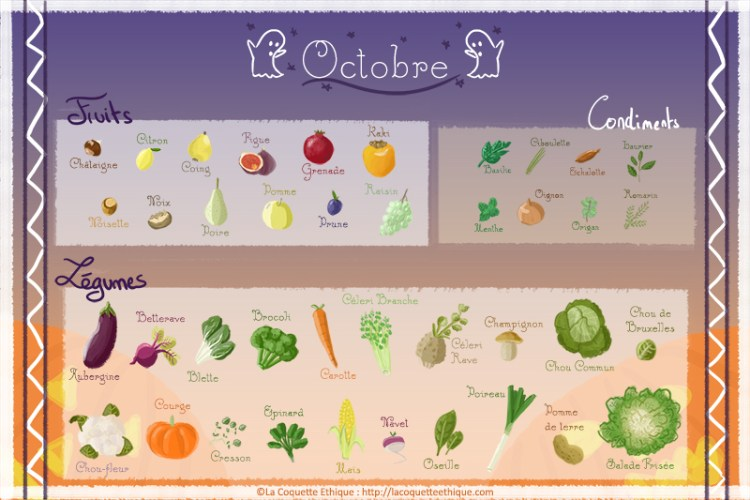 fruits et l gumes d 39 octobre calendrier de saison 10 la coquette ethique. Black Bedroom Furniture Sets. Home Design Ideas