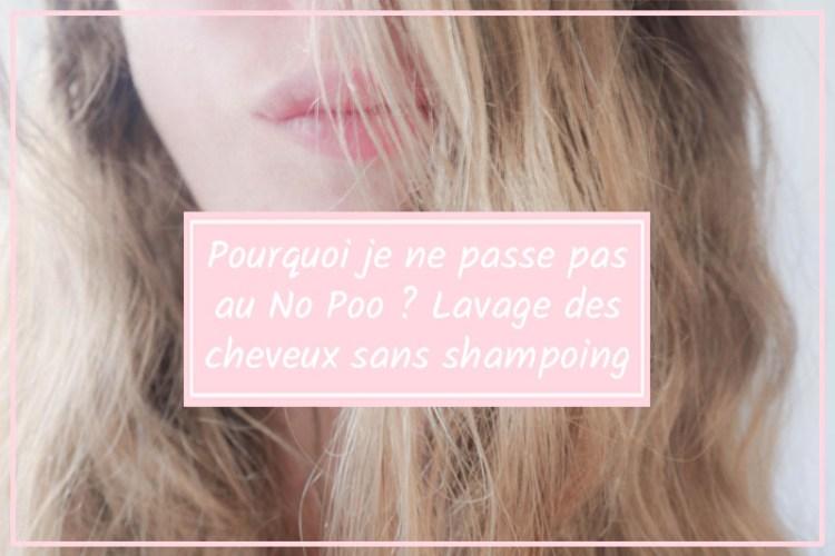 no poo laver cheveux sans shampoing