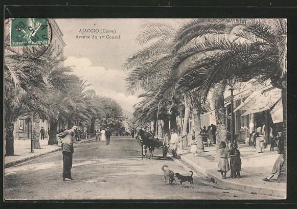 Ajaccio avenue du Premier Consul lacorsedantan.com - Copie (12)