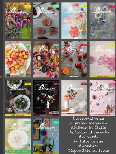 Blossom Zine Cover Gallery